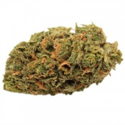 Blue Dream - Fleurs de CBD - Grossiste France